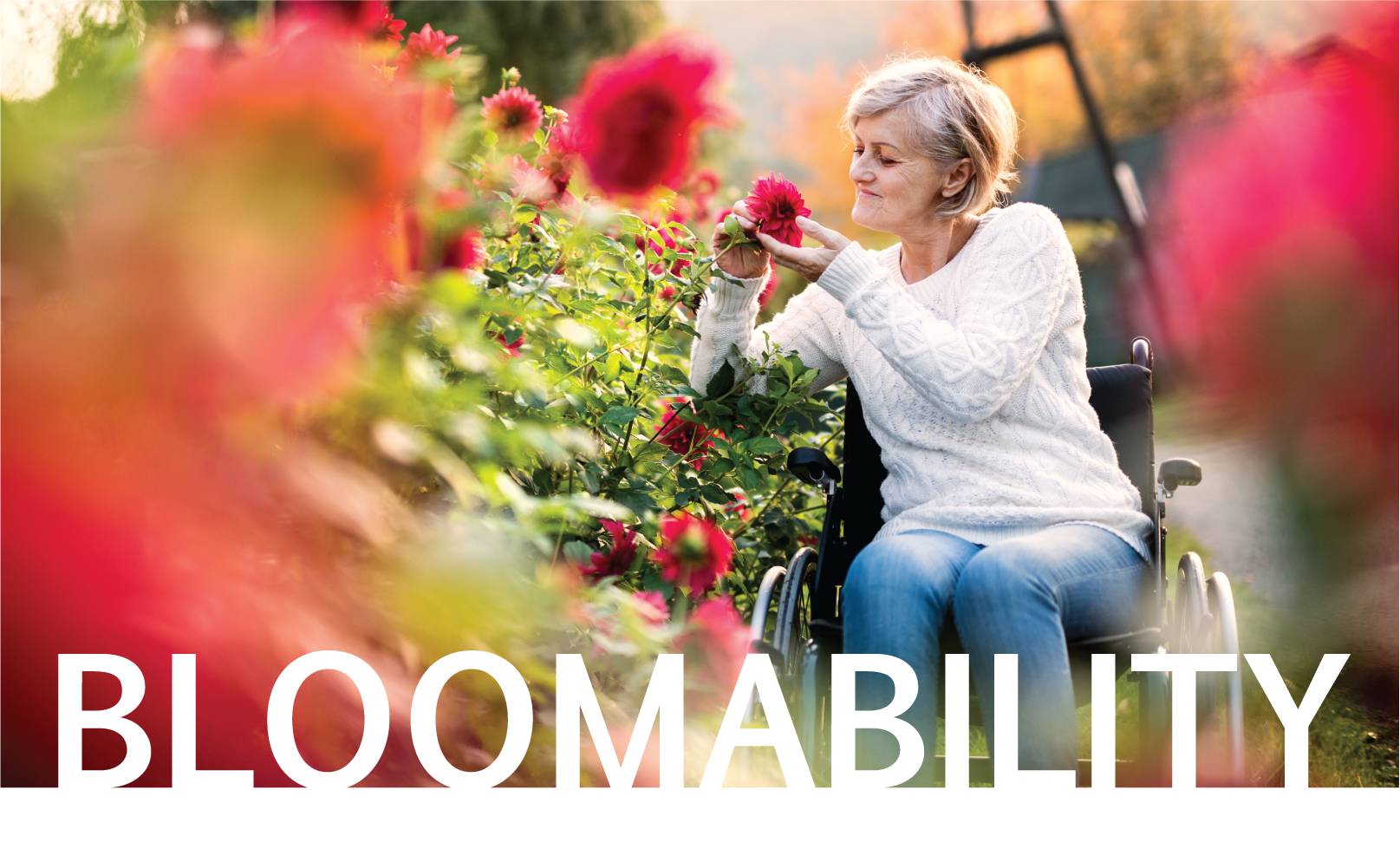 woman in wheelchair smelling flowers in garden with word bloomability over image