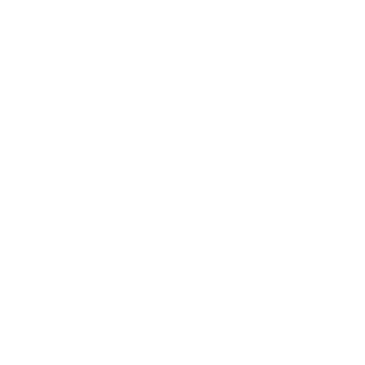 Alaska Center for the Blind and Visually Impaired